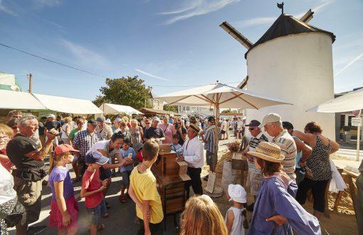 Le marché de Challans suggéré par Bulle Nature, sur le site préservé de la Prévisière, au Poiré sur Vie en Vendée
